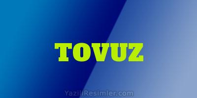 TOVUZ