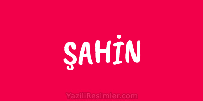 ŞAHİN