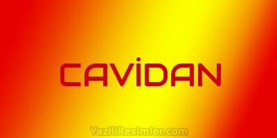 CAVİDAN