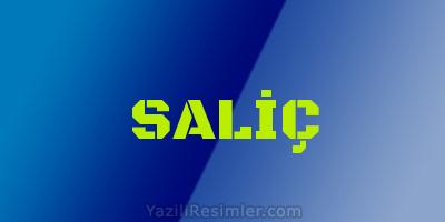 SALİÇ