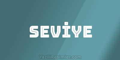SEVİYE