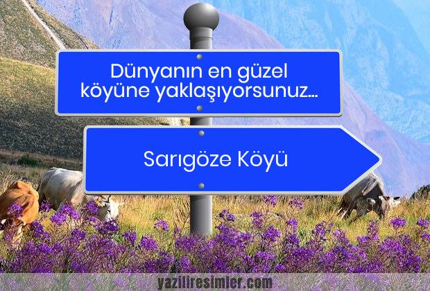 Sarıgöze Köyü