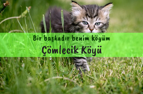 Çömlecik Köyü
