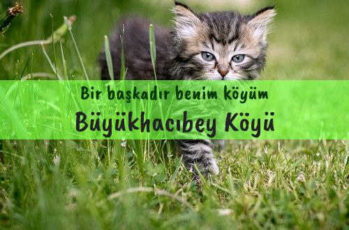 Büyükhacıbey Köyü