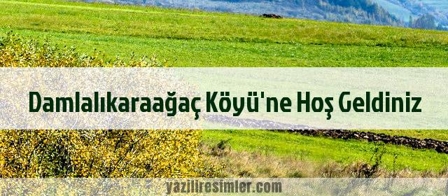 Damlalıkaraağaç Köyü'ne Hoş Geldiniz