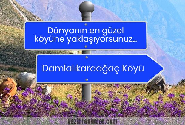 Damlalıkaraağaç Köyü