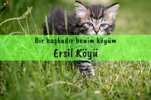 Ersil Köyü