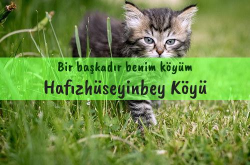 Hafızhüseyinbey Köyü