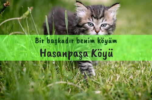 Hasanpaşa Köyü