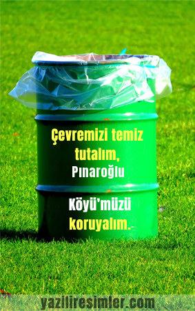 Pınaroğlu