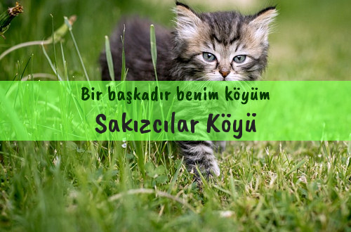 Sakızcılar Köyü