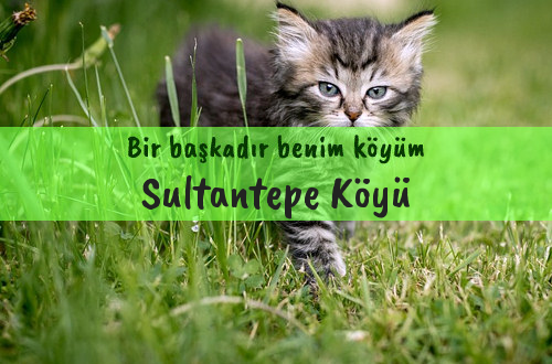 Sultantepe Köyü