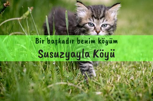 Susuzyayla Köyü