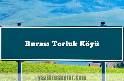 Burası Torluk Köyü